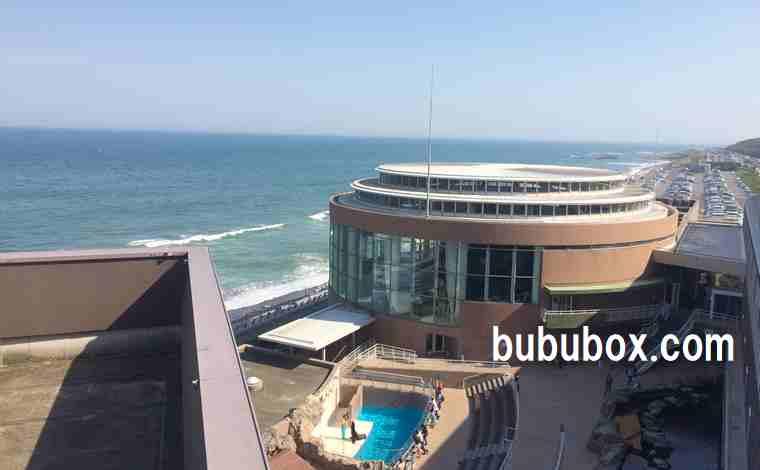 上から見た大洗水族館